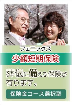 少額短期保険|日本フェニックス